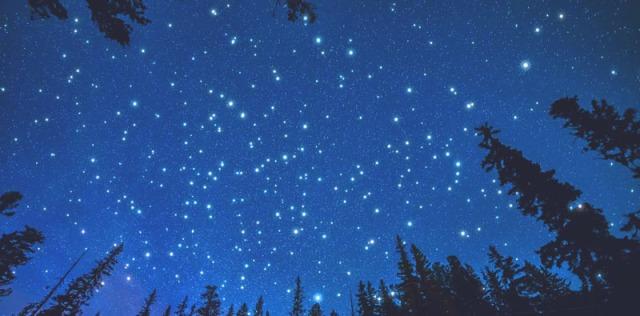 stelle.jpeg